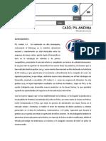 CASO. PIL ANDINA