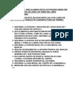 ACTIVIDADES  MAXILR Y MANDIBULA