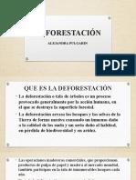 DEFORESTACIÓN.pptx