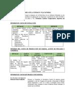 Estructura de Informes Actividades Sectoriales
