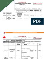 Plan de Sesión Sección 1. Introducción y Necesidades en Materia de RCF. EJEMPLO..docx