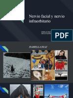 Nervio facial y infraorbitario