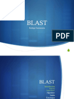 4_BLAST.pdf