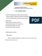 Pre-Informe Unidad 1 2020 II