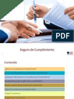 SEGURO DE CUMPLIMIENTO OK (1)