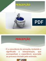 aula_02_percepcao_e_atencao