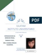 TRABAJO FINAL-INTRODUCCION AL DERECHO PENAL-NERY JIMENEZ CARBAJAL.pdf