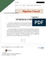 1 NÚMEROS COMPLEJOS _ 1 NÚMEROS COMPLEJOS _ Material del curso ACF-0903-1 _ MéxicoX