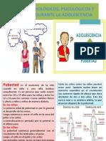 CAMBIOS BIOLÓGICOS, PSICOLÓGICOS Y SOCIALES DURANTE LA ADOLESCENCIA