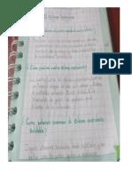 EVIDENCIAS-Prof. LILI MIRIAM ANTINORI REQUEJO-I.E. N°16206-TUTUMBEROS