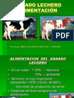 ALIMENTACION  DEL  GANADO  LECHERO