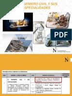 El Ingeniero Civil_Especialidades.pdf