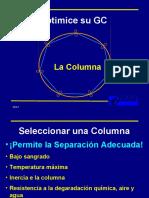 Talk 4 - GC columns ESP.ppt