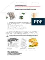 Tema 08b. Ej_clasificación biológica