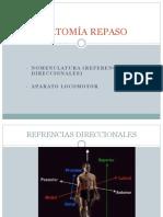 anatomia-convertido.pdf