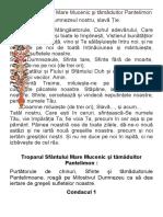 Ac. Sf. Pantelimon.docx