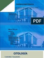 clase_1_Farmacobot.pdf