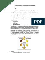 tema 12 - PRODUCCIÓN DE UN BIOCONTROLADOR NO MICROBIANO