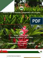 presentacion tematicas y marco