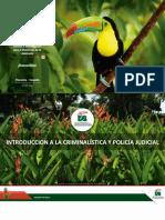Plantilla institucional UA 2020-V6 Marca Oficial Registrada  ICPJ