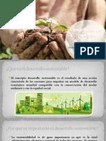 Introduccion a el desarrollo sustentable