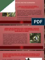 ACT 5 PRESENTACIÓN DIAPOSITIVAS RETOS OPORTUNIDADES Y ASPECTOS LOCALES