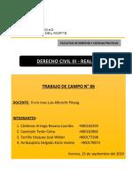 TRABAJO DE CAMPO 06- DESARROLLADO