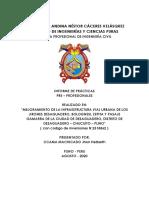 tesisi  andina.pdf