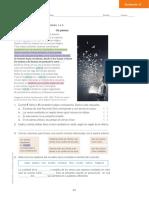 castellano paginas.pdf