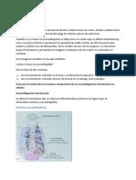 ecocardiograma.docx