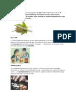 10 drogas legales e ilgales