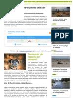 taxidermia - tecnicas innovadoras.pdf