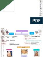 ABP_SISTEMA-OSTEOMUSCULAR.docx