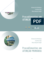 PAP_BOOK_v7 (1).pdf