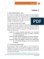 2 Capítulo II