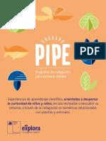 Libro PIPE.pdf