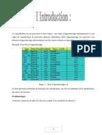 DM-Rapport-Arbres de decision