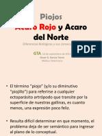 Piojos y ácaros de gallinas.pdf