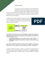Análisis Benchmarking y prospectiva tecnologiad.docx