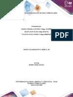 Fase 4 Focalizacion de Ejes Curriculares Trabajo Colaborativo (1).docx