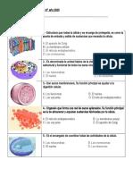 CLASE 11 DE SEPTIEMBRE  EVALUACION.docx