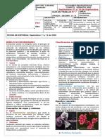 Guia 7. Sanidad animal I.docx
