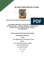 TESIS_MERCEDES DEL PILAR RIVERA HUAYTALLA-convertido