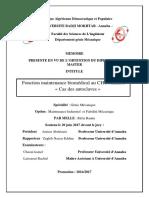 autoclave memoire.pdf