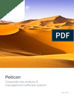 Pelican_ERM_software_executive_overview
