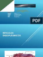 Retículo endoplásmico liso y rugoso_Equipo2_Eugenia Jiménez Solís_290820