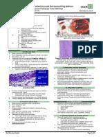 Ovarian and Fallopian Tube Pathology