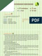 REGOLAMENTO fantacalcio iclerici 2020-2021 (definitivo).pdf