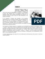 Formation_à_distance.pdf