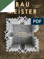 2020-02-01 Baumeister